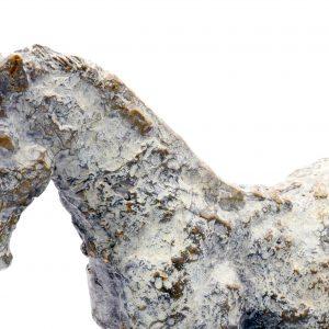 Pedro Alves Trojan Horse4